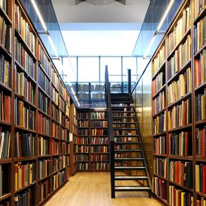 Библиотеки Северска